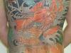 dragonfish1211